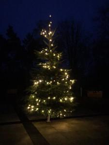 2015.Weihnachtsbaum