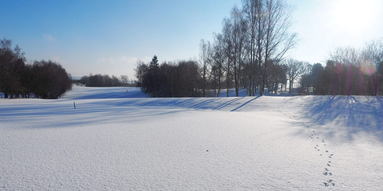 Winter am Hockenberg